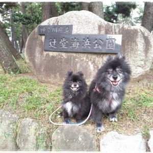 8月28日 辻堂海浜公園