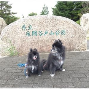 8月29日 座間谷戸山公園