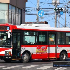 (2020.2) ミヤコーバス・M2482