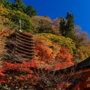 紅葉が彩る奈良2019 色めく談山神社
