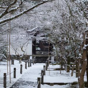 雪の京都2021 雪の華咲く参道(酬恩庵一休寺)