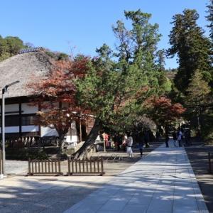 秋、再び鎌倉へ(2)