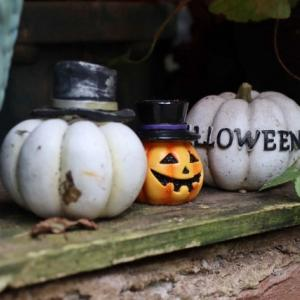 Happy Hallowe'en♪2020🎃