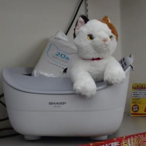 猫ちゃん好きの方の為の新製品。