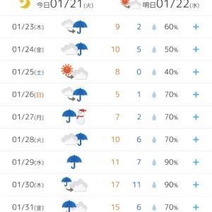 何じゃこりゃ!週間天気予報が梅雨!?(>_