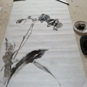 紙箪笥の整理