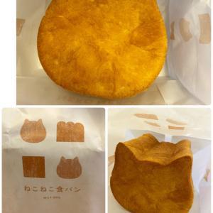 ねこねこ食パン(春名)