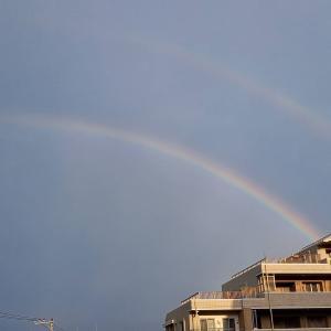 雷雨(丸岡)