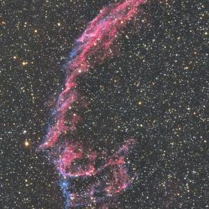 網状星雲、複雑なガスの様子が面白い。