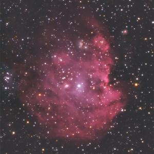 モンキーフェイス星雲