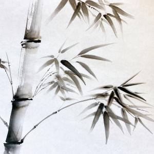 今日の献上画「竹」~写生から制作