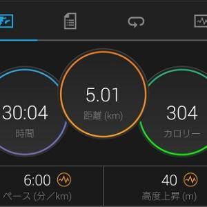 雨上がりのRUN5キロ