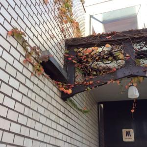 落ち葉の 季節
