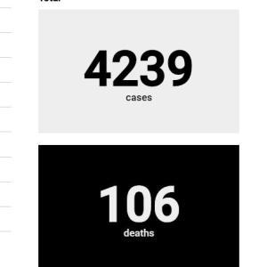 肺炎死者106人 患者4000人に 実際は患者10万人以上か!カウントされていない死者も