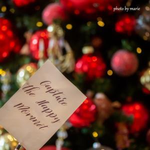 コロナ状況が急変してきた香港、今年のクリスマスはどうなる?をニューズウイーク日本版に寄稿しました
