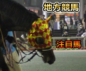 地方競馬予想【鎌倉記念】-能力指数