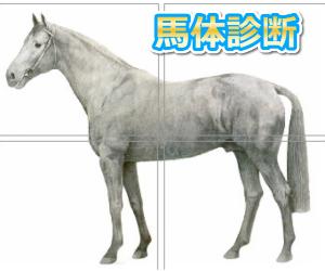 JC(ジャパンカップ)予想|2020年|馬体診断まとめ