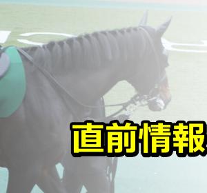 阪神JF予想|2019年|直前情報まとめ