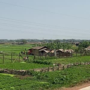 ヤンゴン環状線からの車窓の風景…(^^♪