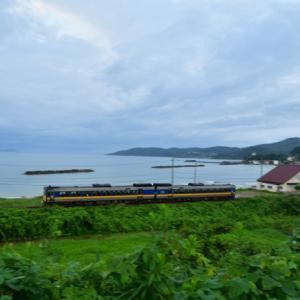 津田海岸を行く「スーパーおき6号米子行き」の流し撮り