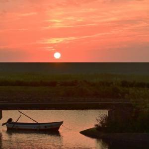 夜明けの仙台の海岸 / surrogacy