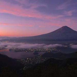 反日外国人がなぜ日本で働きたいのでしょうか?