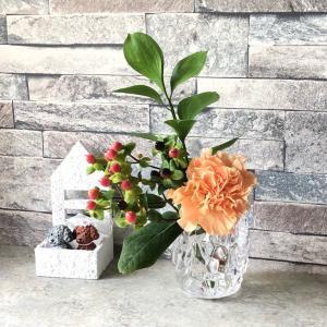 お花の定期便が届きました