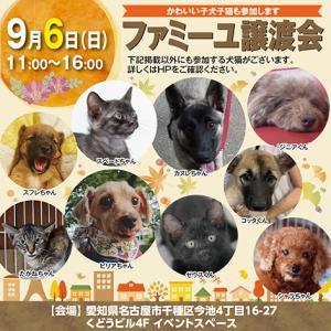 9月6日(日)譲渡会が開催されます!!