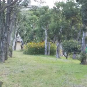 昨日の赤塚公園の写真です