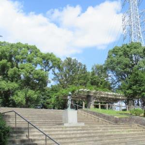 今日もドングリを拾いながらウォーキング~赤塚公園