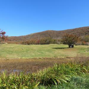 吾妻山から見える風景・・