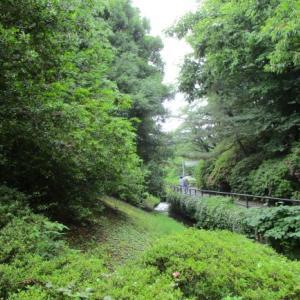 千葉県清水公園へ。4~50年ぶり?に尋ねる