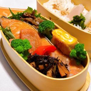 お弁当いろいろ〜☆