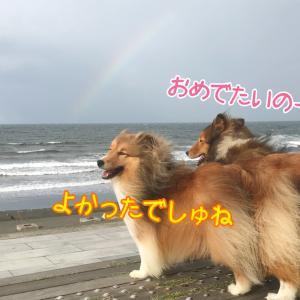 虹はフロールちゃんからのメッセージ!? フロール家にアネットちゃんがやって来た!!