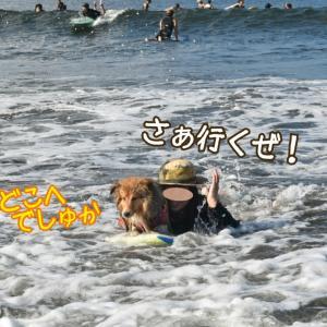 夏だ!海だ!ボードとボートだ~!!