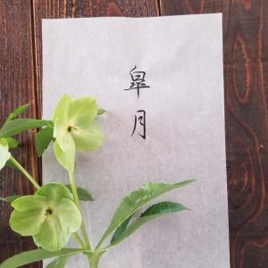 【皐月】5月のスケジュール