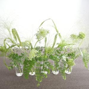 お家にあるもので手軽にお花を飾ってみました