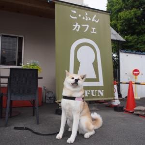 Co.FUNカフェ (こ・ふんカフェ) - 堺市