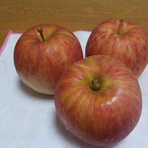 フルーツの季節ですね。