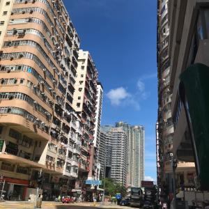 今日も青空の広がる香港 夕ご飯と猫たち 今日のラン