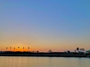 アマダイ2021初釣り@まなぶ丸 江ノ島片貝漁港