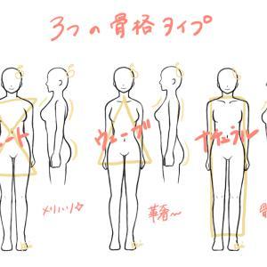 絵と骨格診断