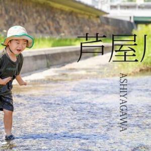 セレブの集う町芦屋 そこに流れる芦屋川へ遊びに行ってみた さて息子は濡れずに遊べるか?