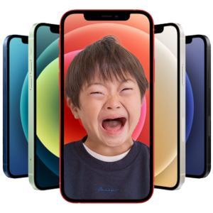 iPhone12 Proを購入!カメラ性能の向上がすごい 2台で○○万円