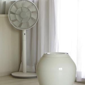 まだ5月だというのに・・・ 今日は扇風機をスタンバイ。