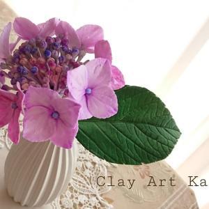 額紫陽花.。. .。.:*・♪