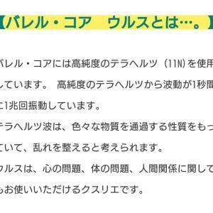 【保存版】新型コロナ最終話+「バレルコア ウルス」