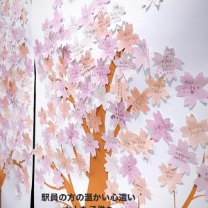駅構内にあるみんなの想いで咲かせる桜
