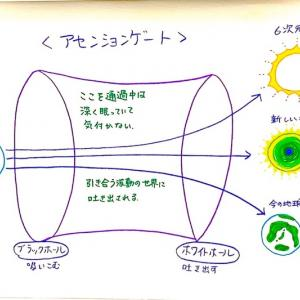 """""""並木良和さん統合(初級)WS 文字起こしVol.4「アセンションのプロセス①"""""""