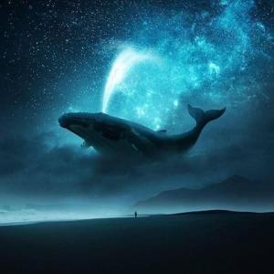 ショート2020-01  聖なるクジラ、イルカの集合意識